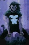 wolverinepunisher.jpg